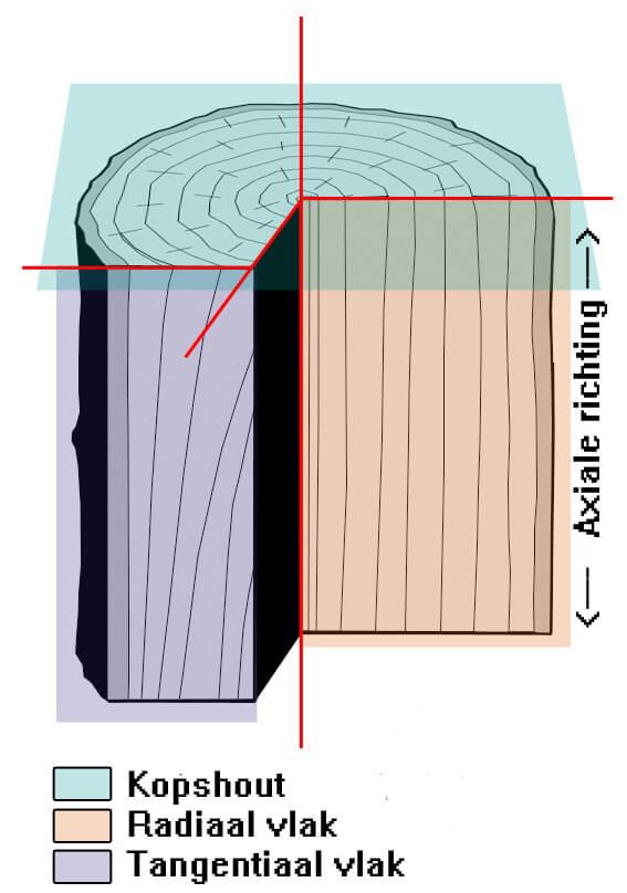 mechanische eigenschappen van hout